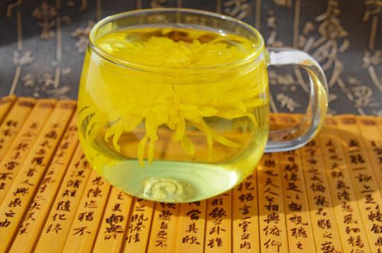 大菊花茶和小菊花茶哪个好,喝菊花茶大朵的好还是胎菊好