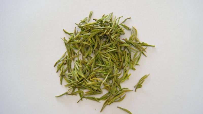 安吉白茶是什么茶