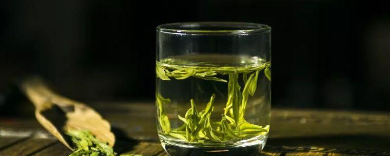 西湖龙井属于绿茶吗