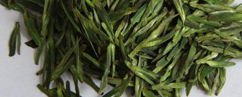 龙井茶属于什么茶