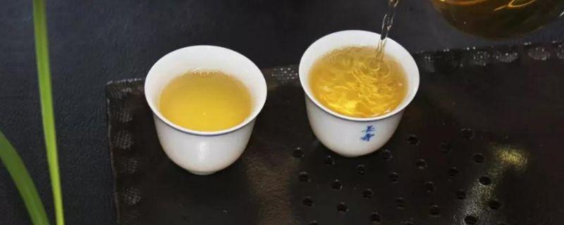 老白茶怎么泡才正确