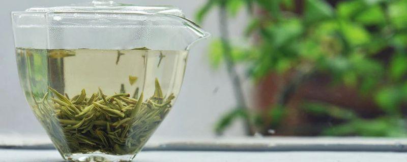 碧螺春是什么茶类