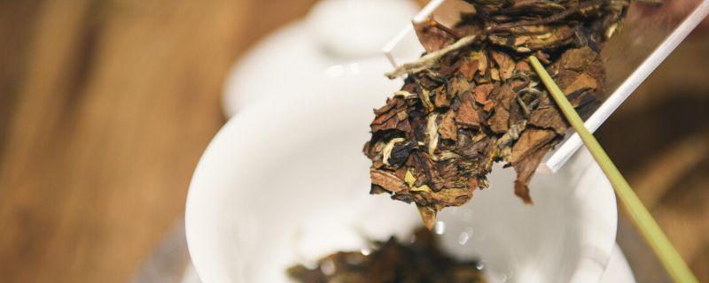 老白茶和新白茶区别