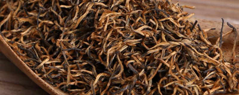 金骏眉是发酵茶吗