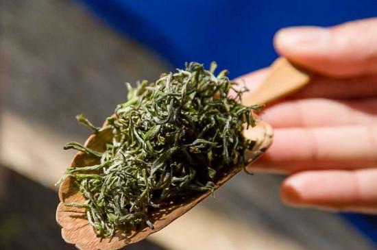 崂山绿茶的功效与作用,9大养生效用促健康