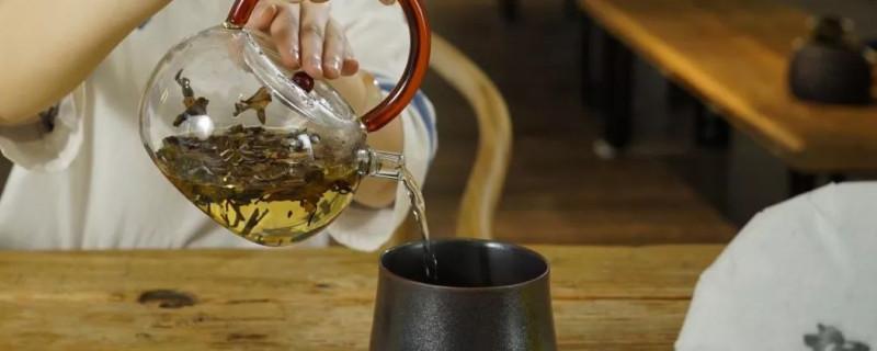 白茶用什么壶泡