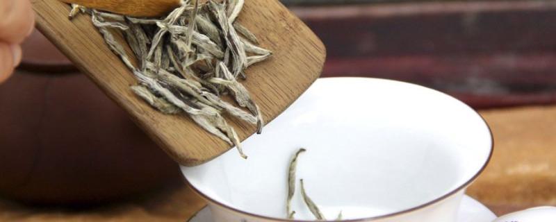 白茶用多少度水冲泡