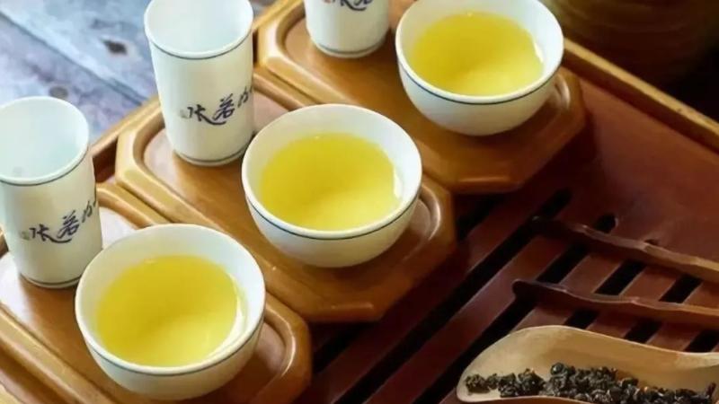 乌龙茶属于什么茶性