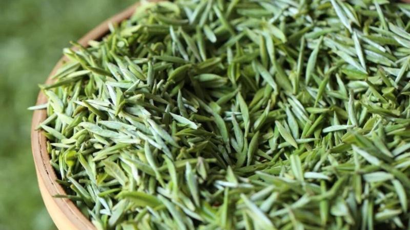 茗茶是绿茶吗