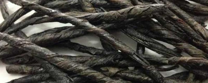 苦丁茶有什么作用和功效,长期喝苦丁茶的好处