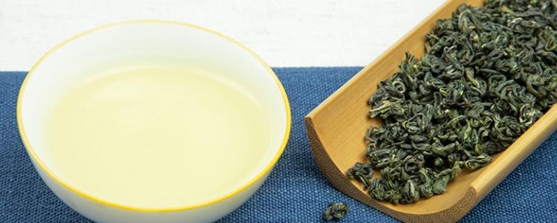 松萝茶与屯绿区别