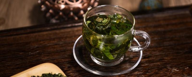 桑叶茶的功效与作用及禁忌