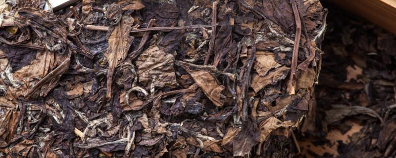 老白茶属于什么茶类