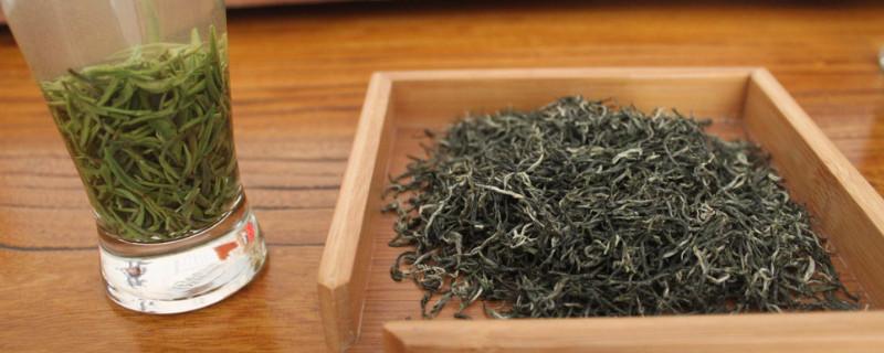 明前毛尖是绿茶吗