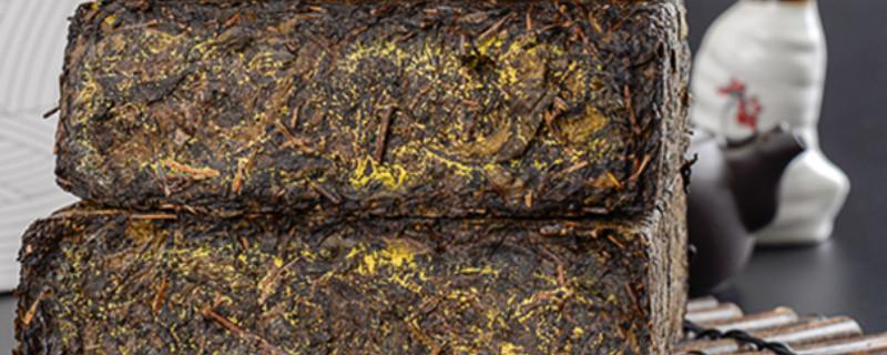 安化黑茶属于什么茶