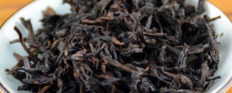 老枞水仙属于什么茶