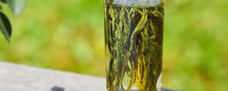 猴魁属于什么茶