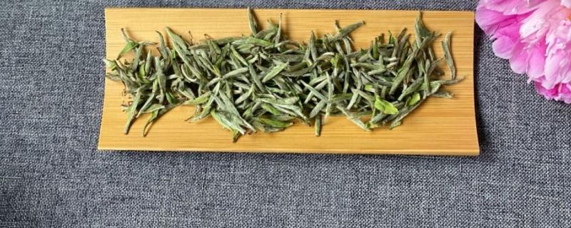 松针白茶属于什么茶