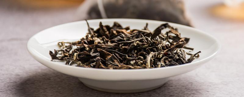 东方美人茶怎么泡