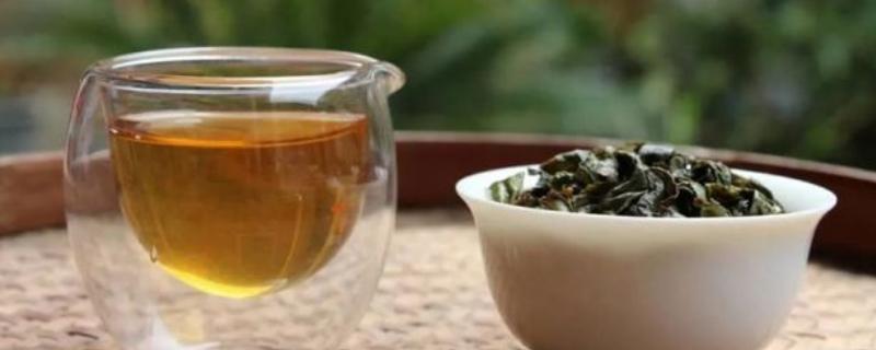 乌龙茶都有哪些品种