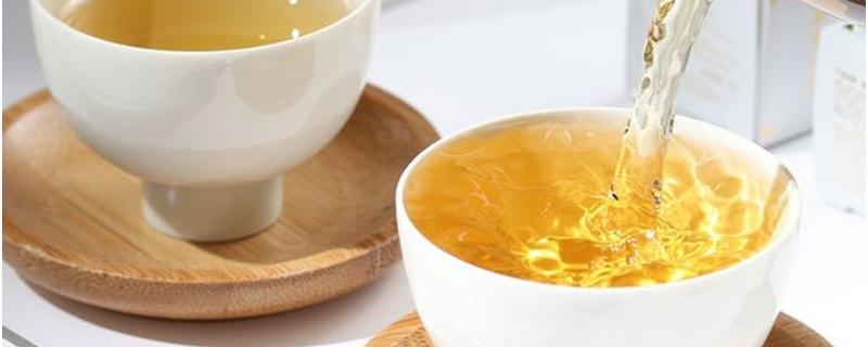 白茶是发酵茶吗