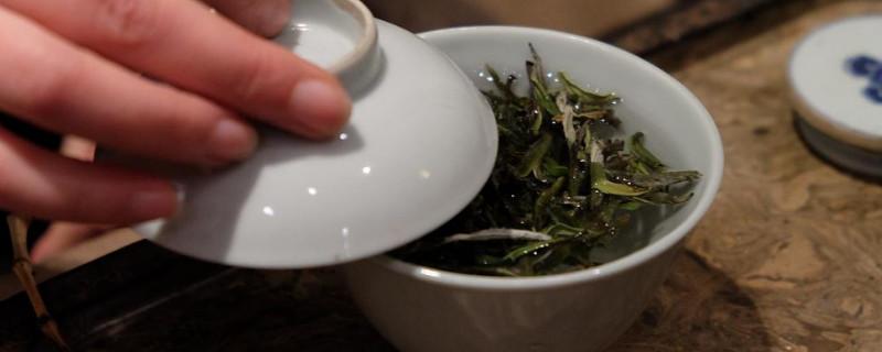 白茶有什么