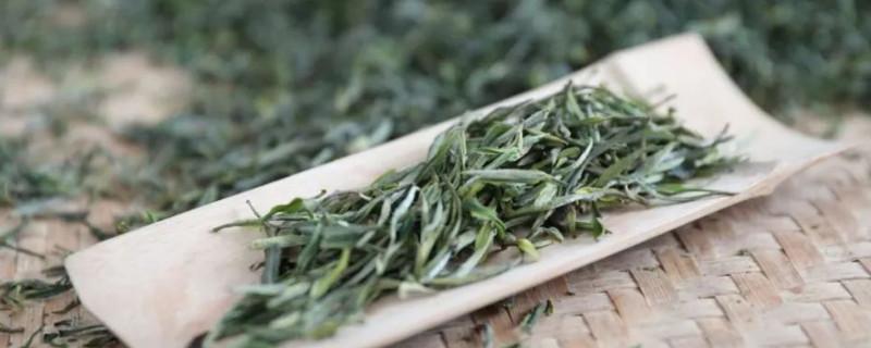 顾渚紫笋茶是什么茶