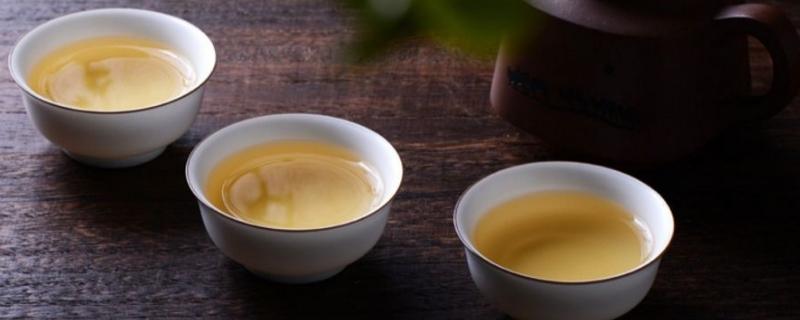 冰岛茶是生茶还是熟茶