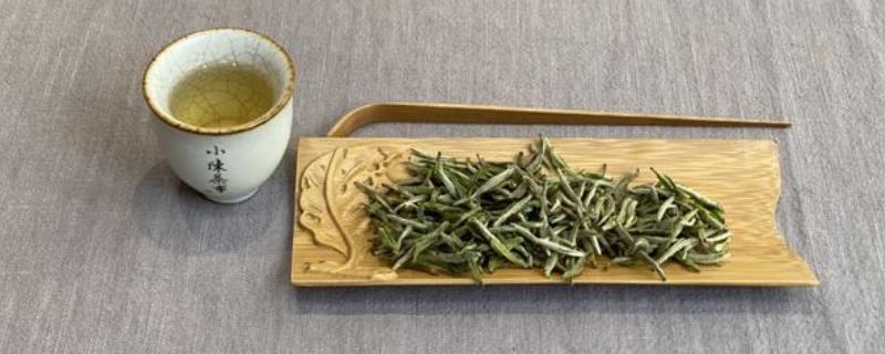 阳羡雪芽属于什么茶