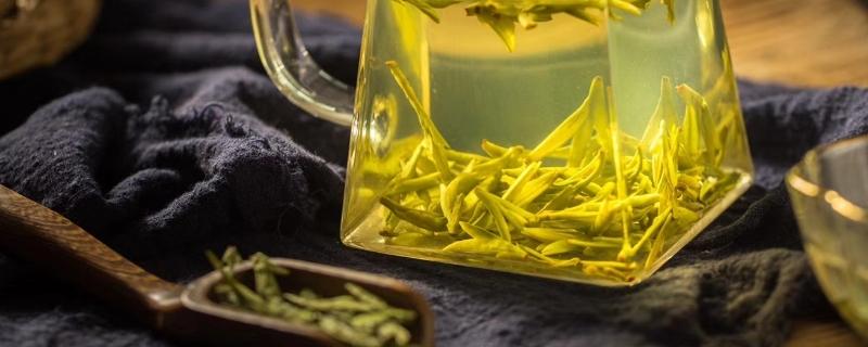 绿茶的泡法